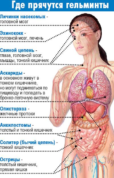 диагностика паразитов